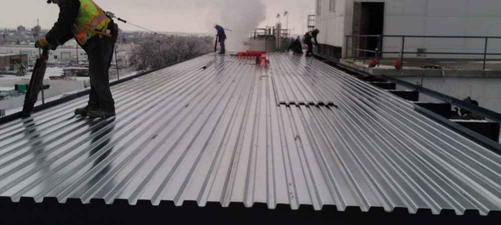 Richardson Oilseed Roof Panels