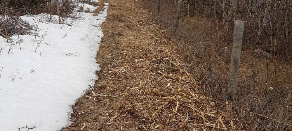 Waterton Boundary Fence Clearing - Westco Construction