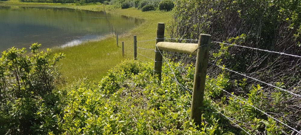 Waterton Boundary Fence During Summer - Westco Construction