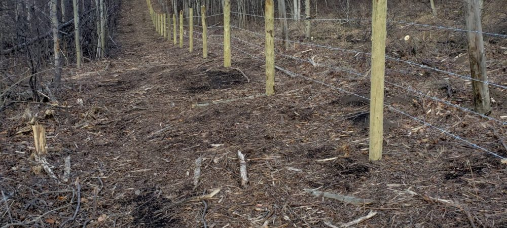 Waterton Boundary Fence continues