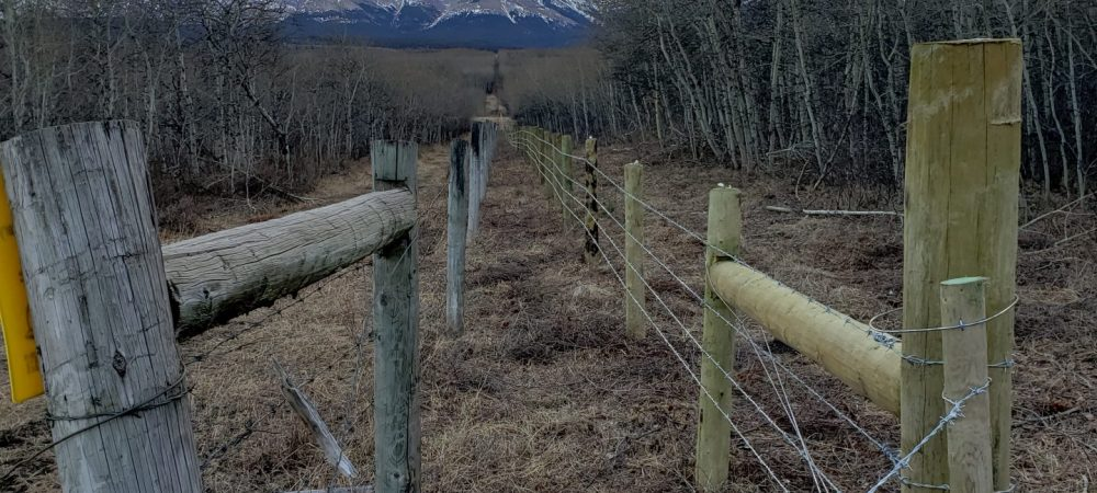 Waterton Boundary Fence - New and Old